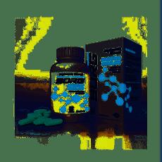Borg-Magnesio-Dimalato-60-Capsulas